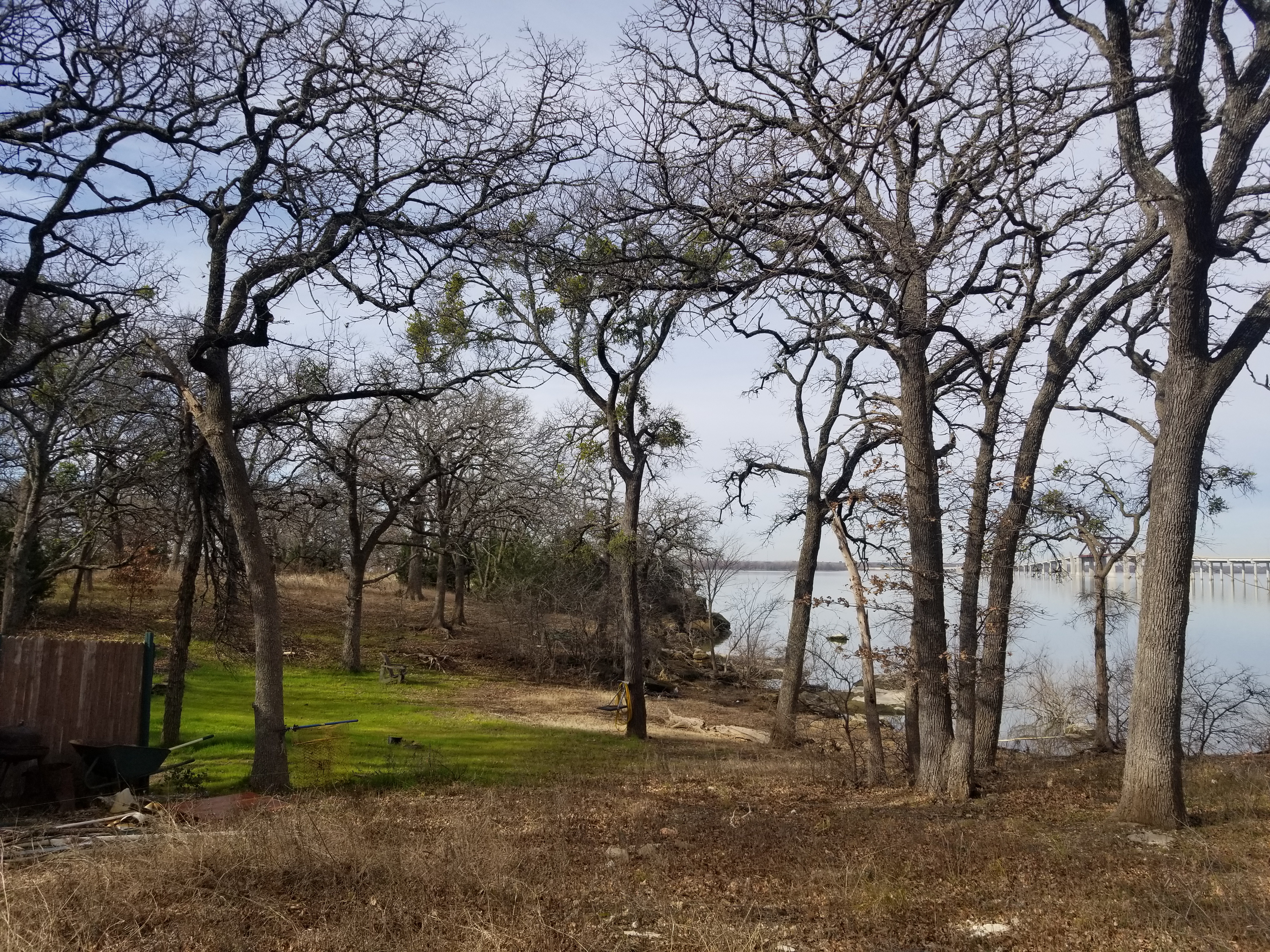 This lakefront lot has lots of native, Texas grass sprinkled with a few trees.